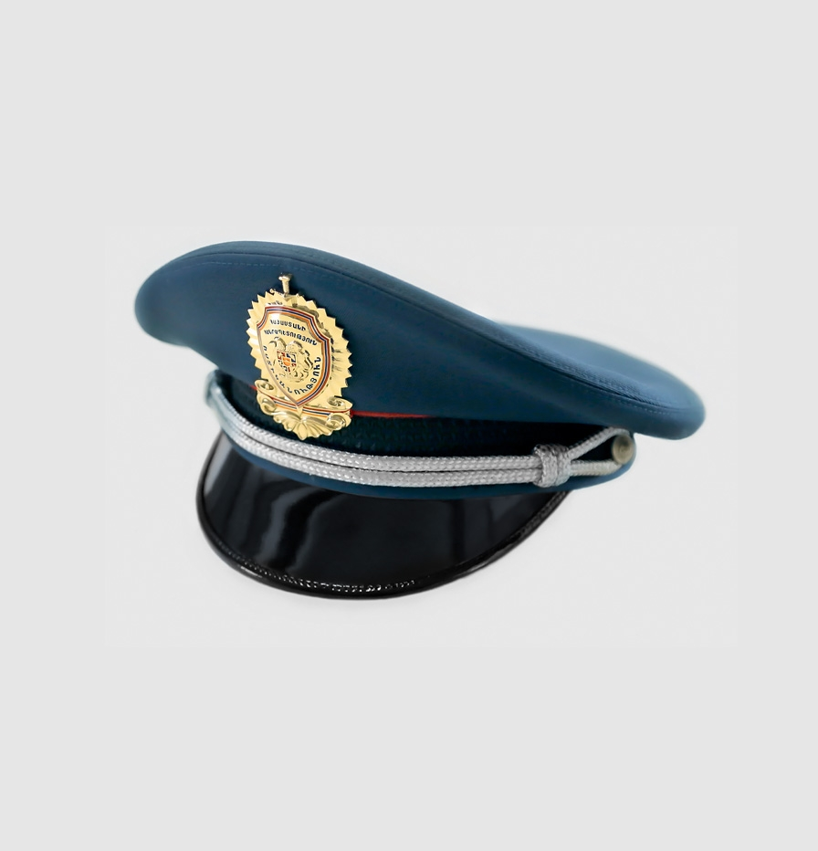 THE POLICE OF THE REPUBLIC OF ARMENIA